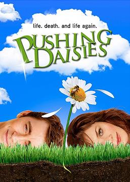 photo Pushing Daisies